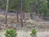 great-cheap-fremont-colorado-property-