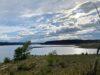 seller-financed-land-near-trinidad-lake-state-park