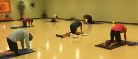 COVID-Safe Yoga Classes at...