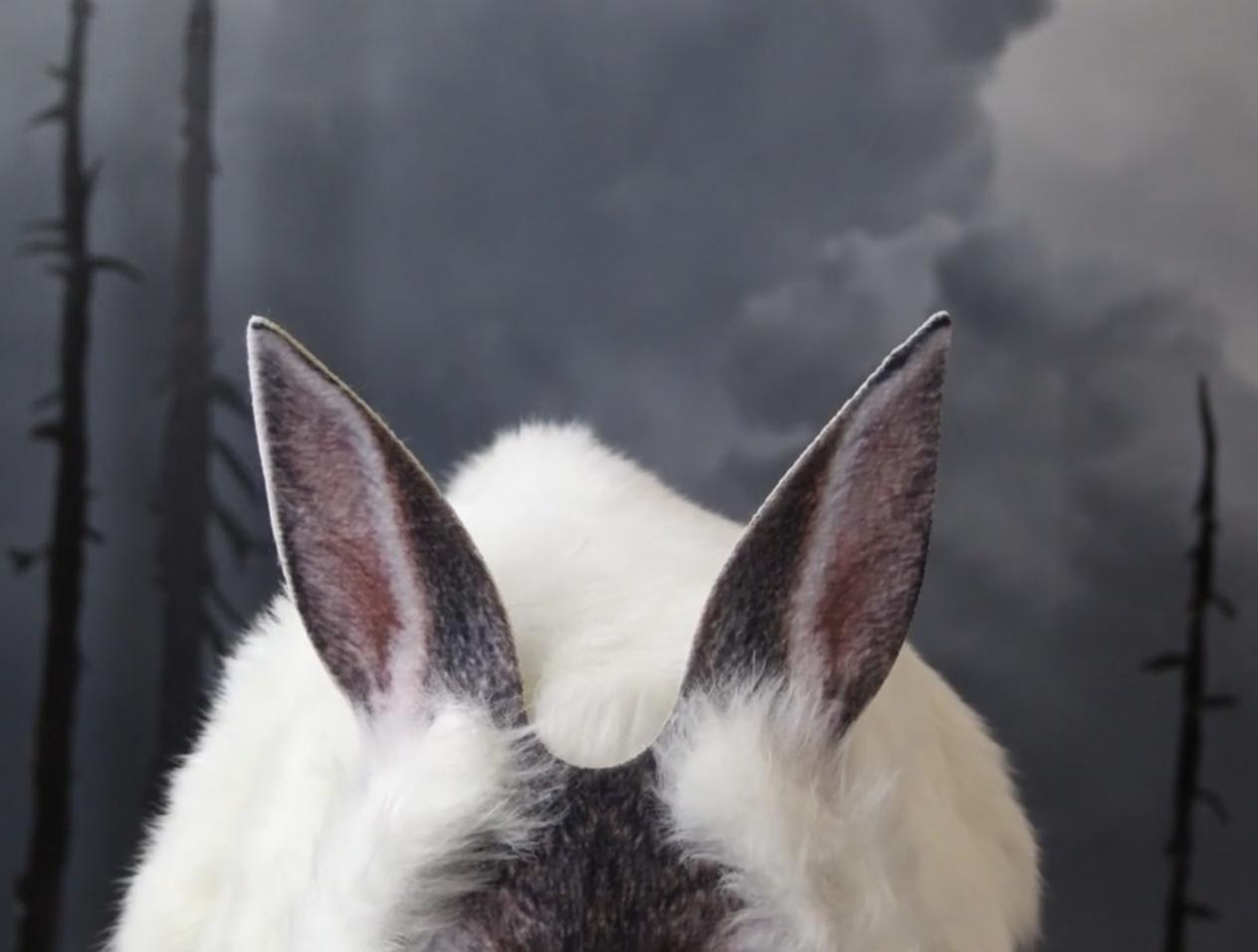 film still from Alice in Dystopia, by Jeanne Jaffe