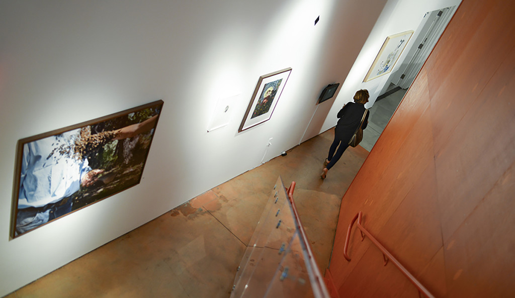 Self-Proliferation opening photo by Voltagge