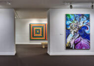 image of gallery installation at NSU Art Museum