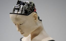 AI and the cloud: Separating fact from fiction