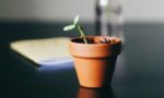 How to prepare your startup for growth