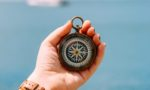 From startup to scaleup: how to navigate rapid growth
