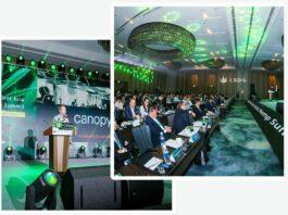 China Hemp, Marijuana Stock Review