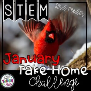 STEM January At Home Challenge