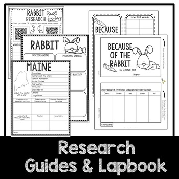 STEM Because of the Rabbit Activities