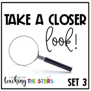 Distance Learning | Picture Observations |Take a Closer Look SET 3