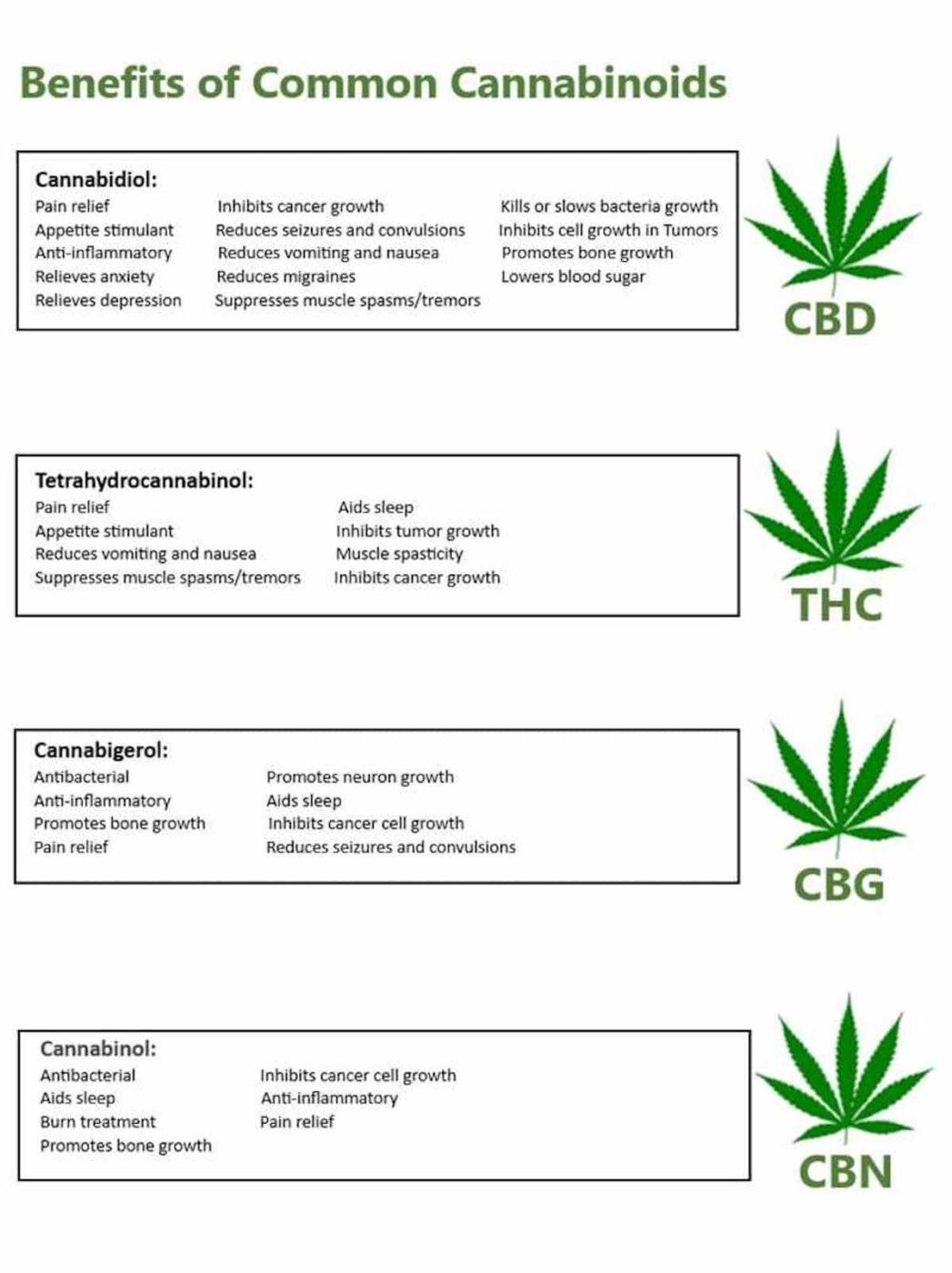 Benefits of Cannabinoids