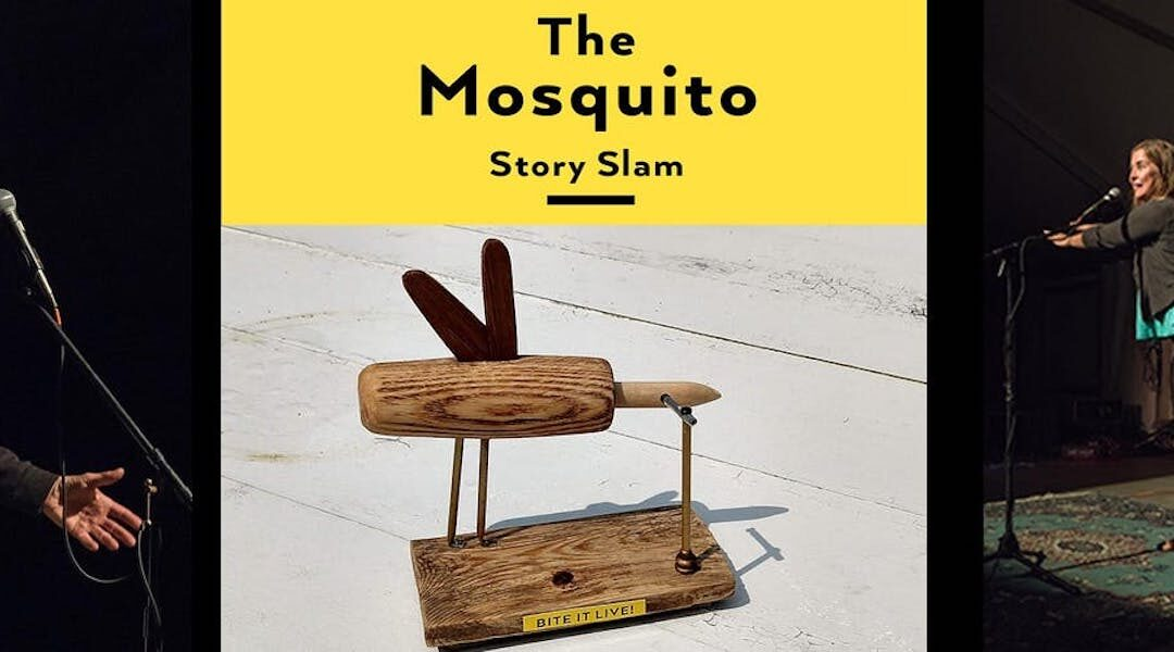 Provincetown Mosquito Storyslam
