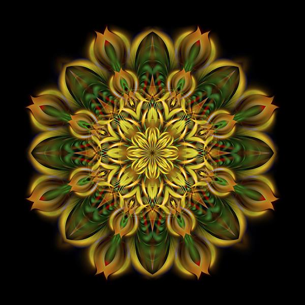 alien_sunflower_sm-copy