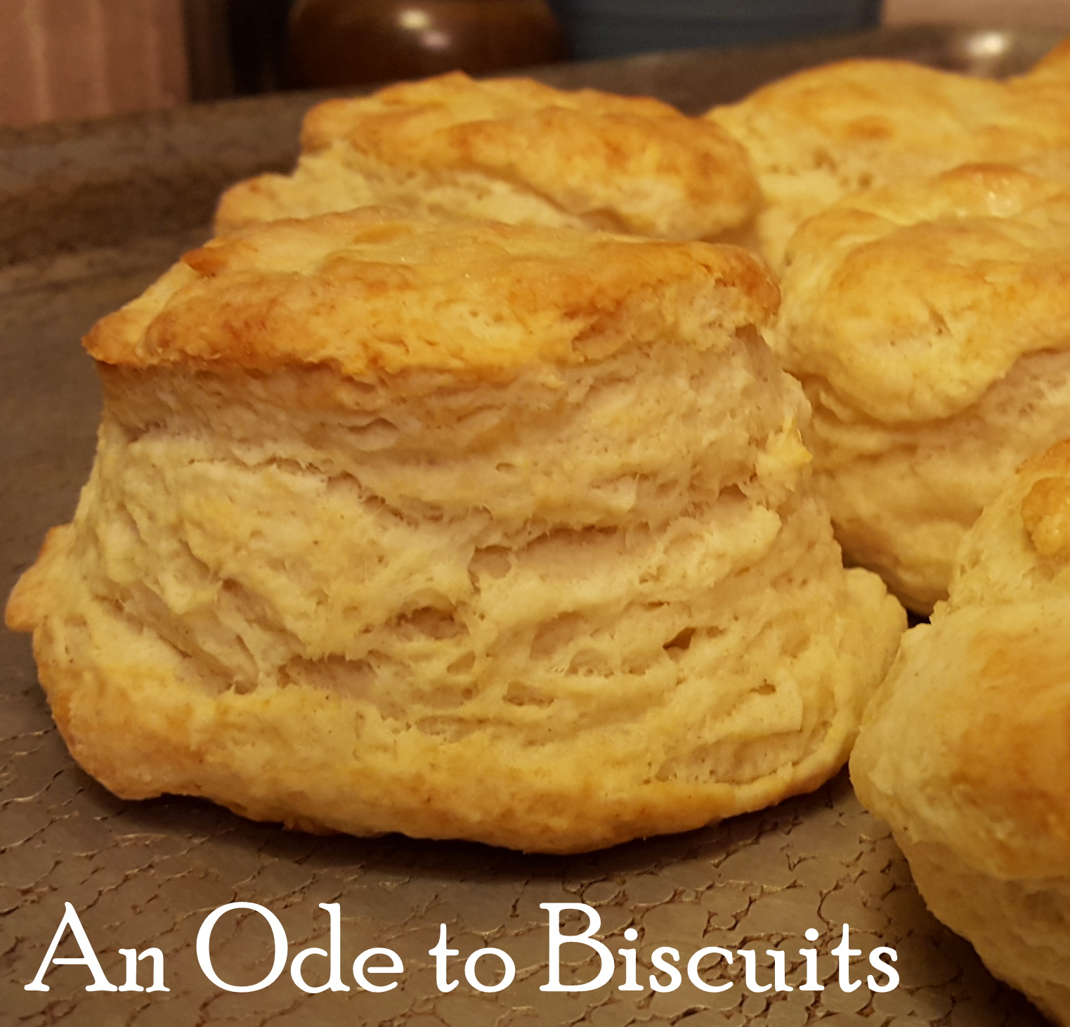 i8tonite: An Ode To Biscuits (with recipe!)