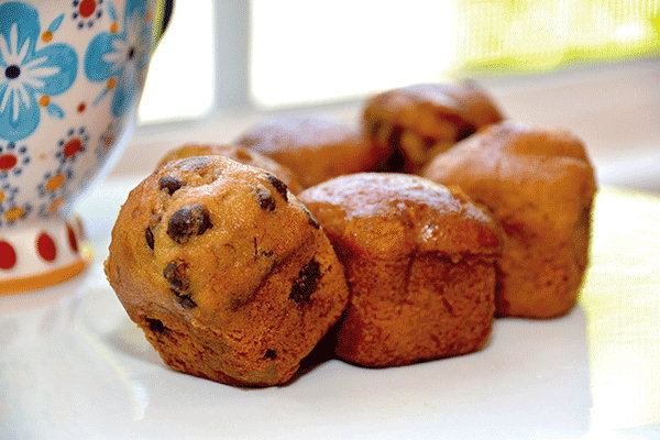 Buddies. From i8tonite: One New York Woman's Food Allergies Became an Award-Winning Bakery