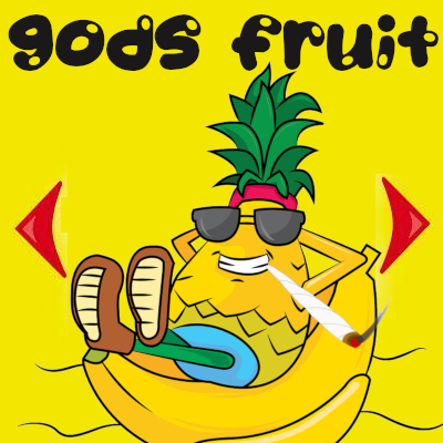 gods-fruit-cannabis-strain-feminized-dagga-seeds