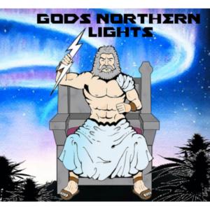 gods-northern-lights-strain