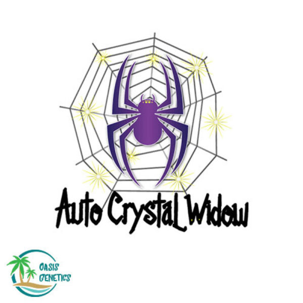 auto-crystal-widow-oasis