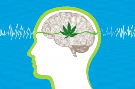 weed-during-pregnancy-effects-on-baby-brain