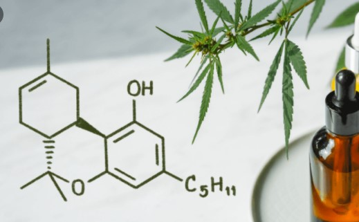 phytocannabinoids