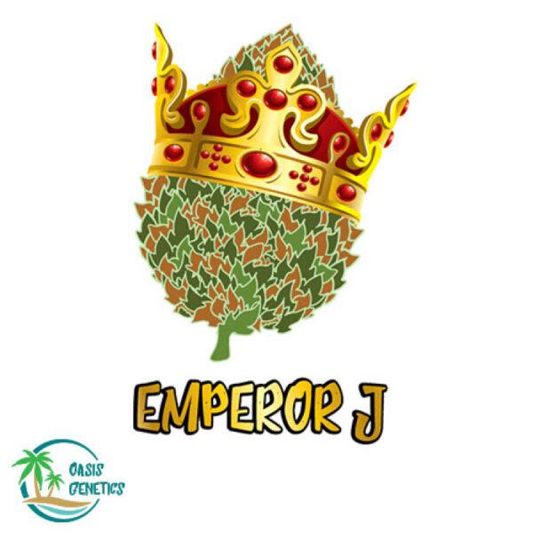 autoflower-jack-herer-seeds-emperor-j-oasis