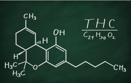 thc-class-science-of-getting-stoned