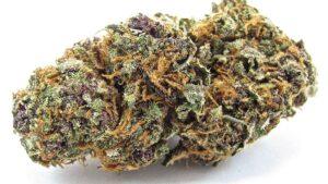best-cannabis-top-shelf-appearance-diagram