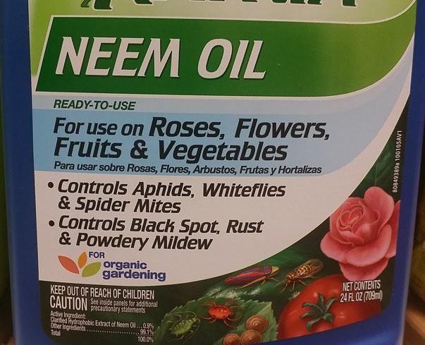 neem-oil-to-control-organic-treatment
