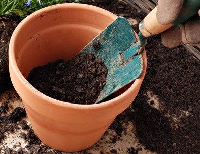 making-super-soil-step-3-diagram
