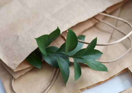 Imagem de várias sacolas sustentáveis, com um ramo de planta saindo de dentro delas.