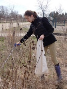 Abby cleaning up on Earth Day 2014