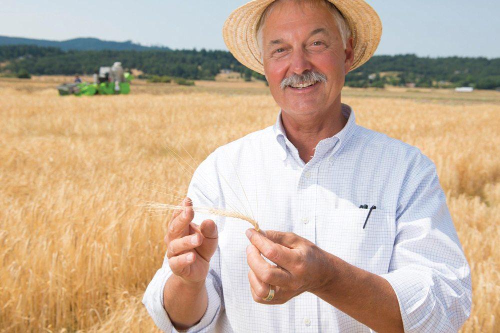 'Terroir turns everyday malt into 'luxury barley'-Alberta Farmer Express