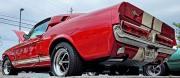 MRP-Car-Show-2021-11-min