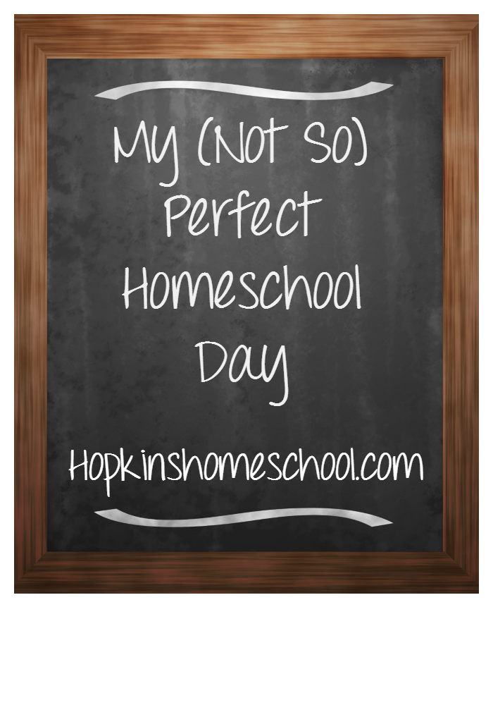 The (Not So) Perfect Homeschool Day