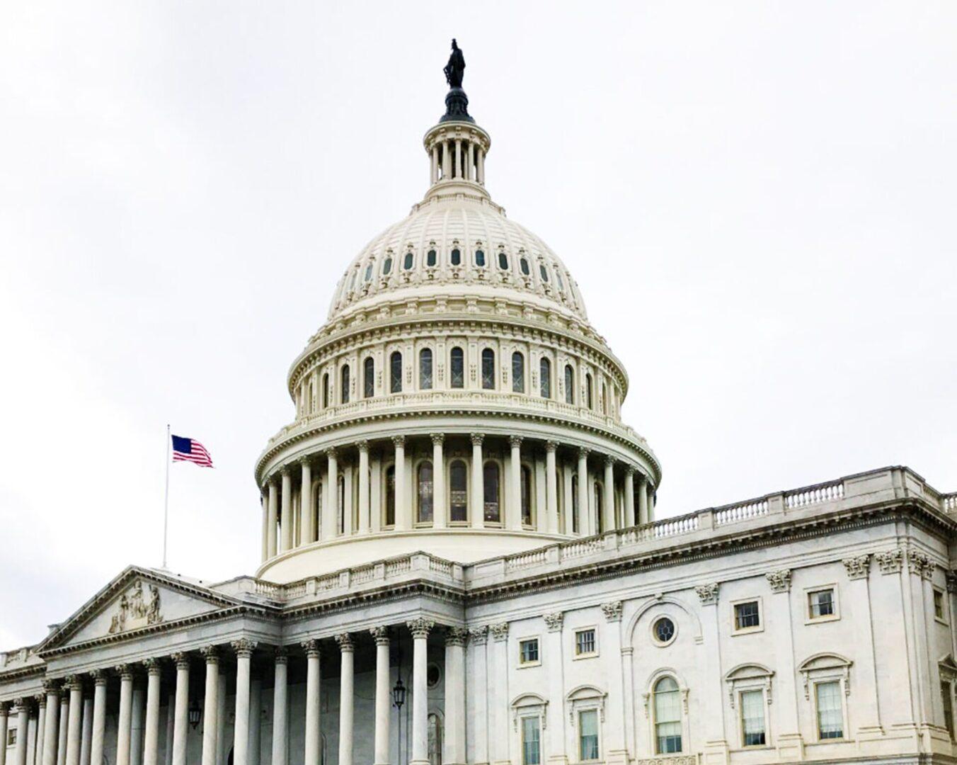 Capitol with Small Flag ian-tuck-tYXDQ1G2jiw-unsplash