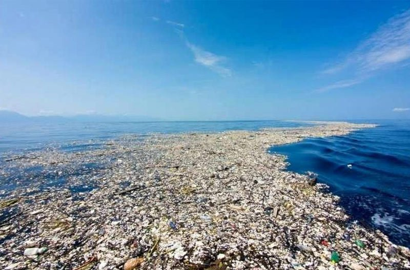 great pacific patch of garbage, mostly plastic