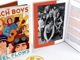 Beach Boys Feel Flows record