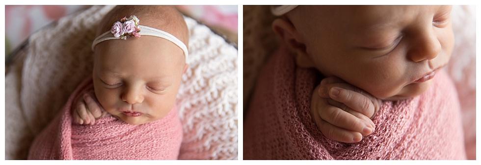 newborn photos philly