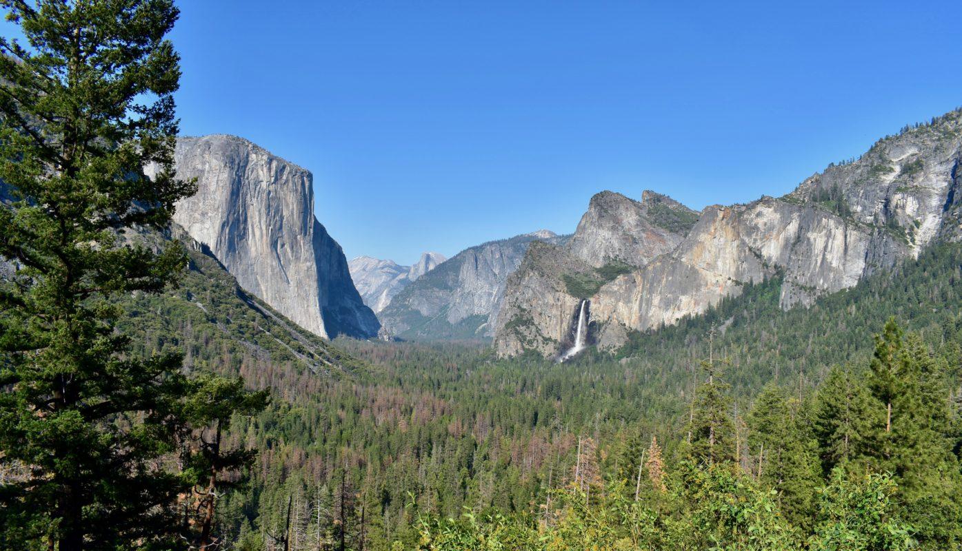 Top five family activities in Yosemite
