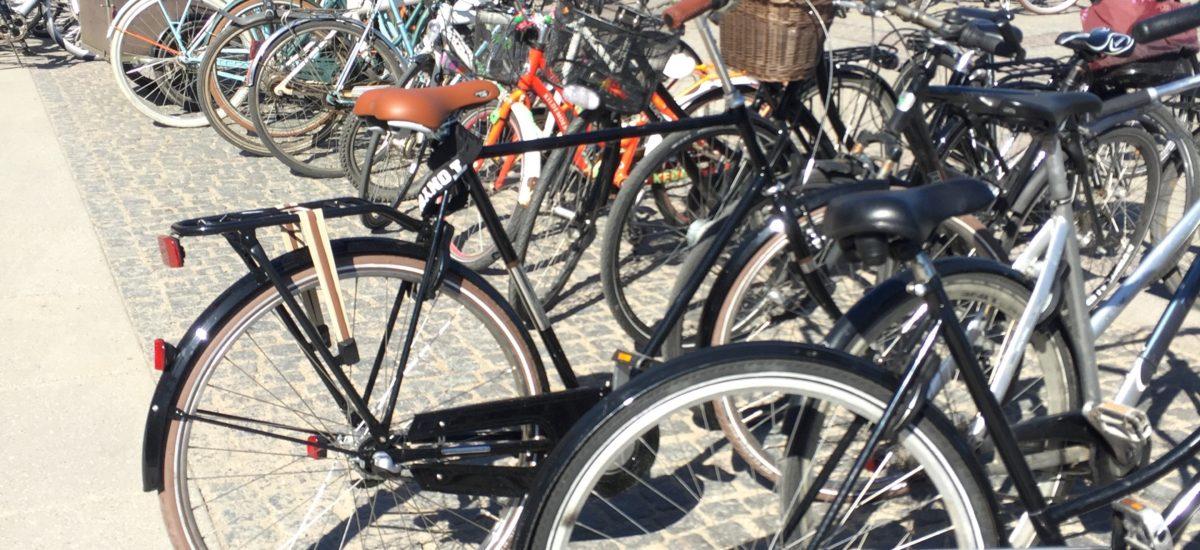 Day Trips from Copenhagen by Bike