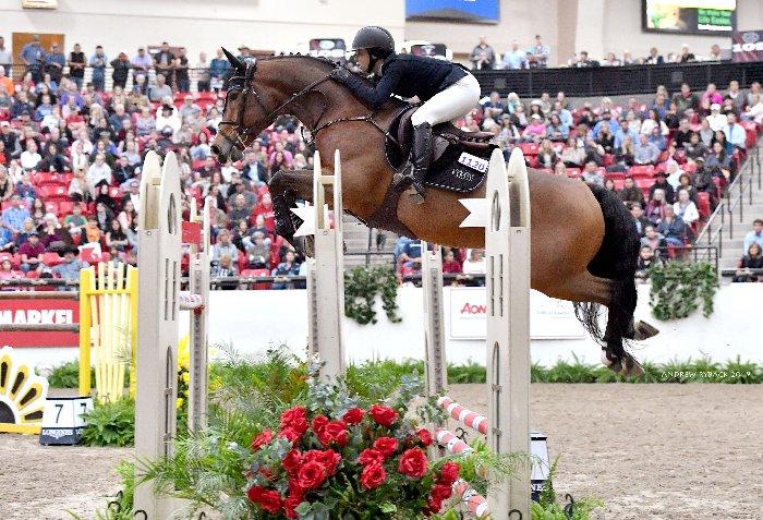 Jumping horse Las Vegas