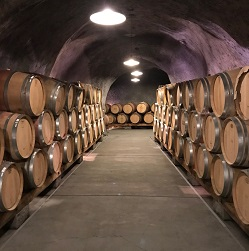 Wine, Investment Costs, and Perception