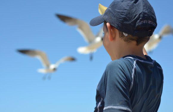 Projeto Mães no Canadá: Como curtir o verão com os pequenos na região costeira de New Brunswick
