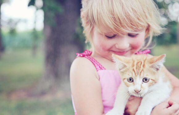 Crianças no Canadá: Uma vida simples por um mundo melhor