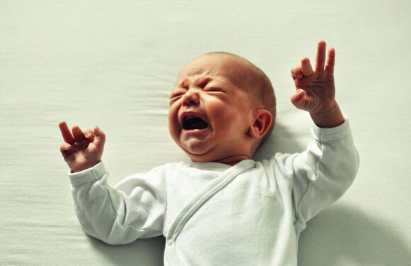 Vida com filhos no Canadá: o lado B que ninguém conta