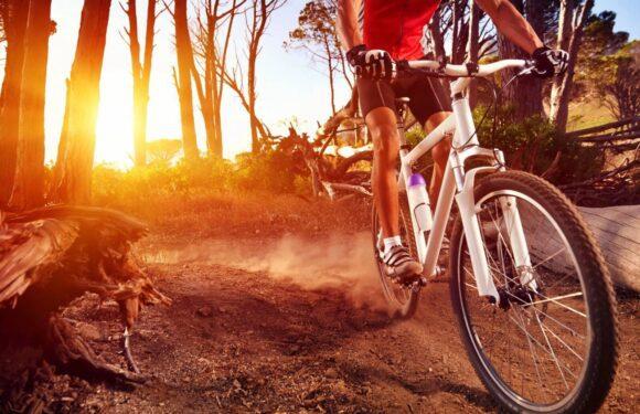 Ciclistas no Canadá: O melhor lugar para pedalar é aqui