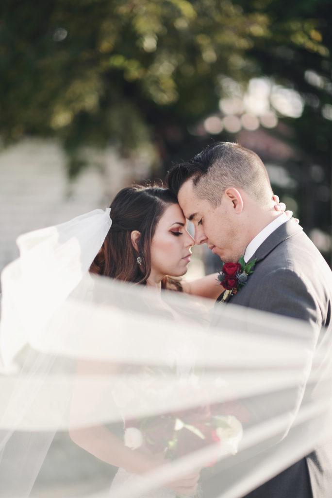 bride and groom, wedding veil shot