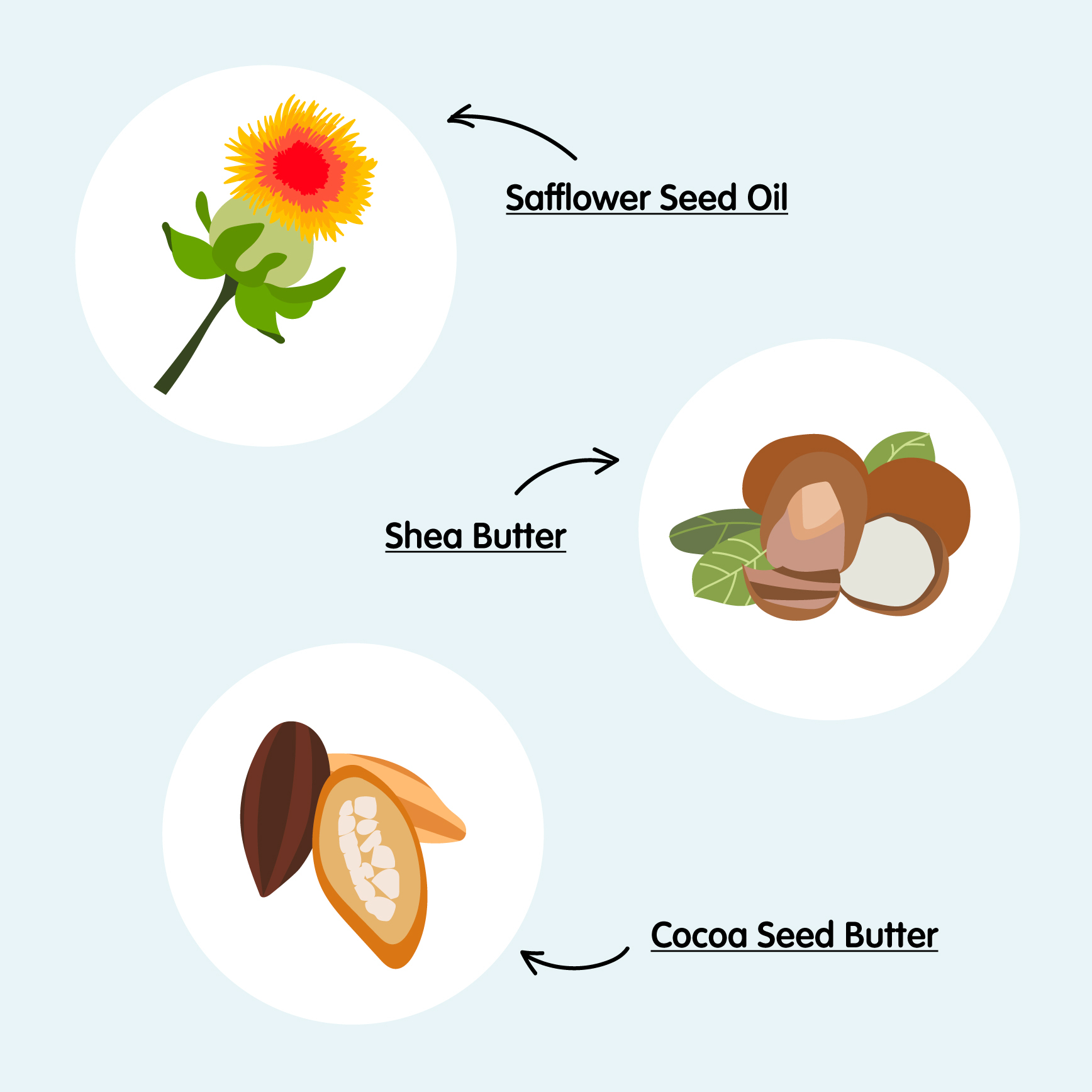 Dream Cream featured ingredients