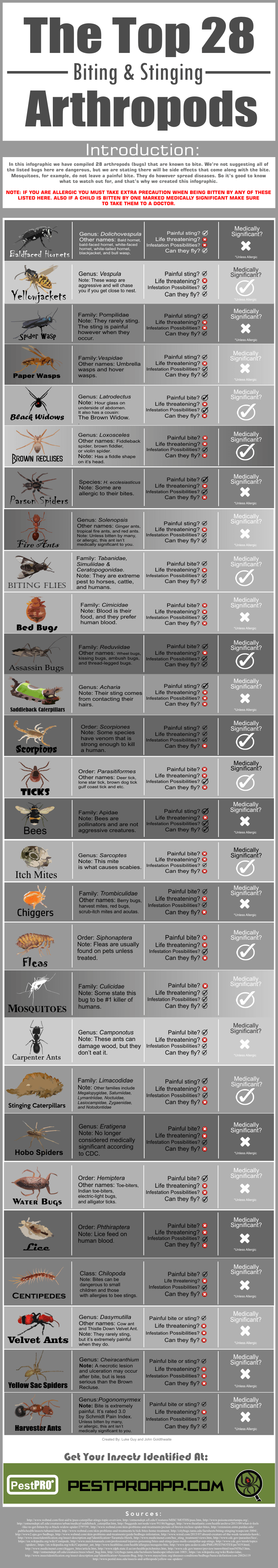 insects that bite and sting