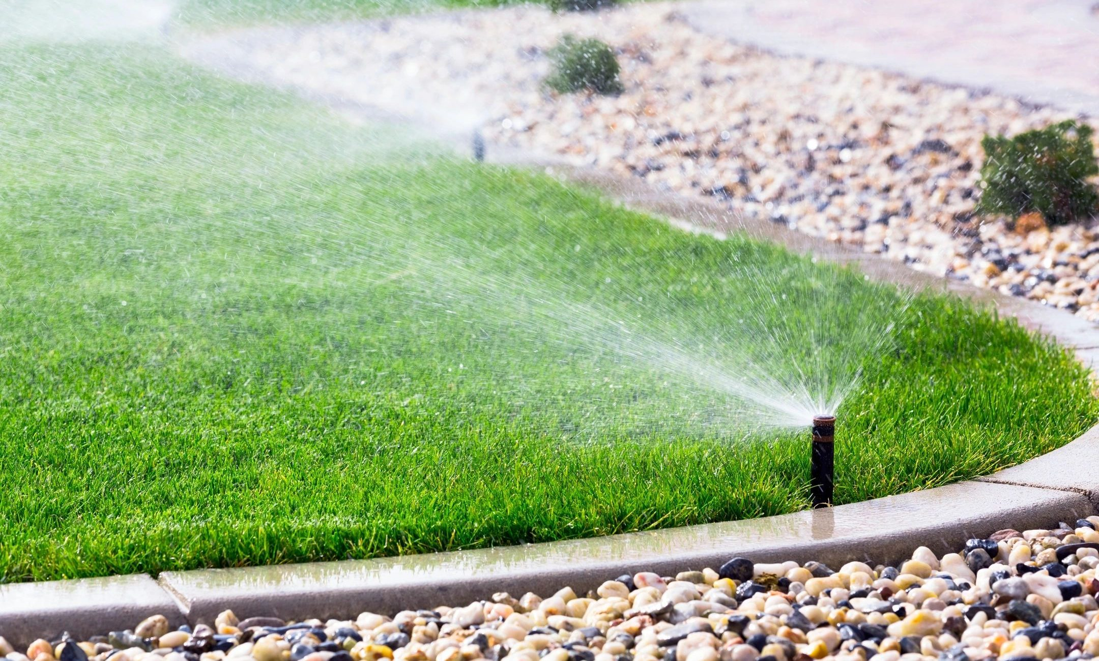 We find Irrigation Leak