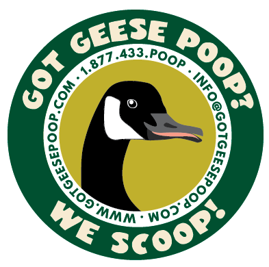 Got Geese Poop?